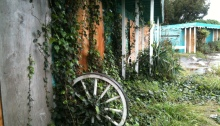Wagon Wheel with Ivy